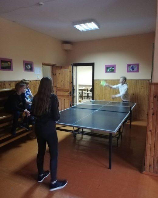 Girininkuose, stalo tenisas